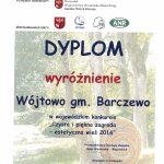 dyplom_wojtowa